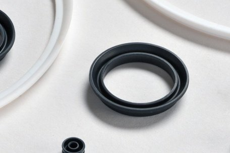 Lip Seals and V-rings and their use in the Oil and Gas Sector